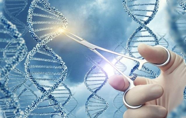 آزمایش ژنتیک چه زمانی انجام میشود - سرطان پستان - غربالگری - ژنهای BRCA1 و BRCA2