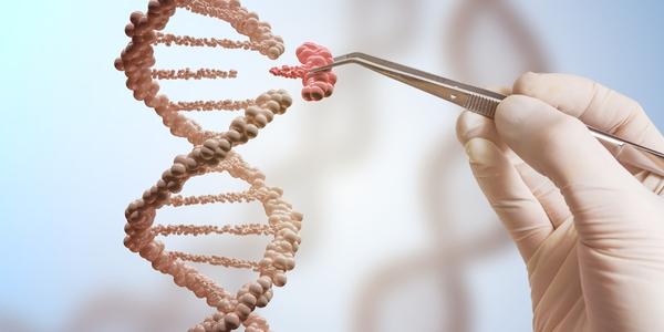 آیا سرطان تخمدان ارثی است - سابقه خانوادگی - درمان با جایگزینی هورمونی - HRT
